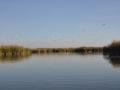 colorado-river-delta-3